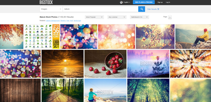 bigstock-search-results-page